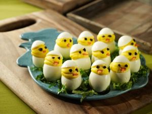 egg_chicks