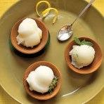 lemon-sorbet-FARMF0306-lg
